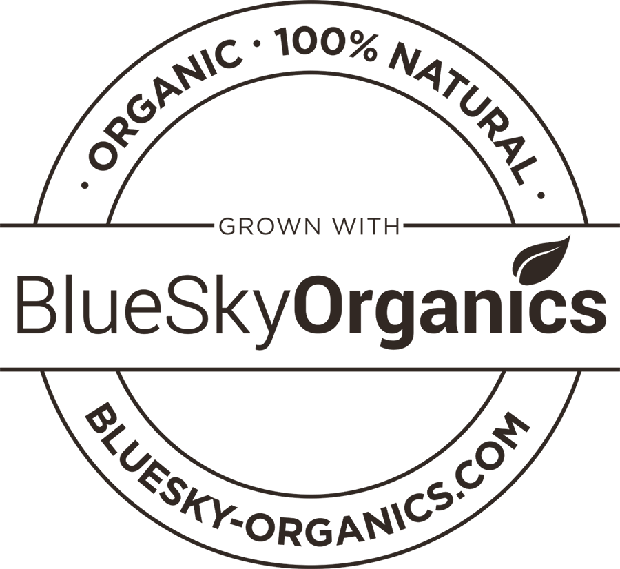 bluesky-craftlogo