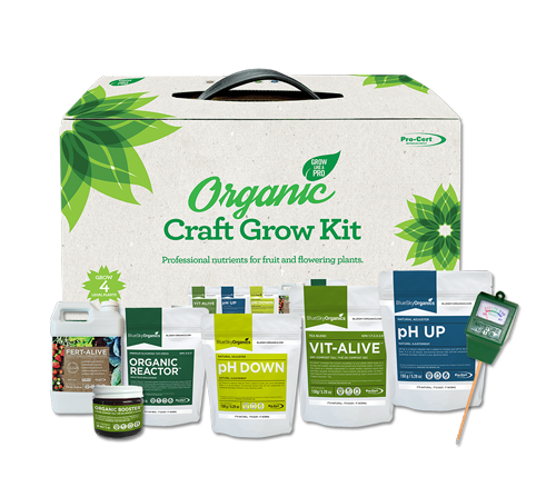 bluesky organics craft growing kit packaging and contents
