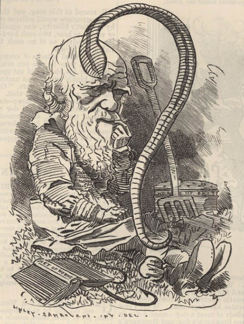 a caricature from 1881 of Darwin sitting in a garden with a pitch fork and books and a large earthworm in the middle forming a question mark