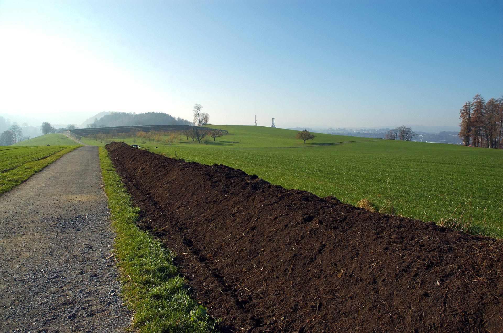 BlueSky Organics Compost in Field