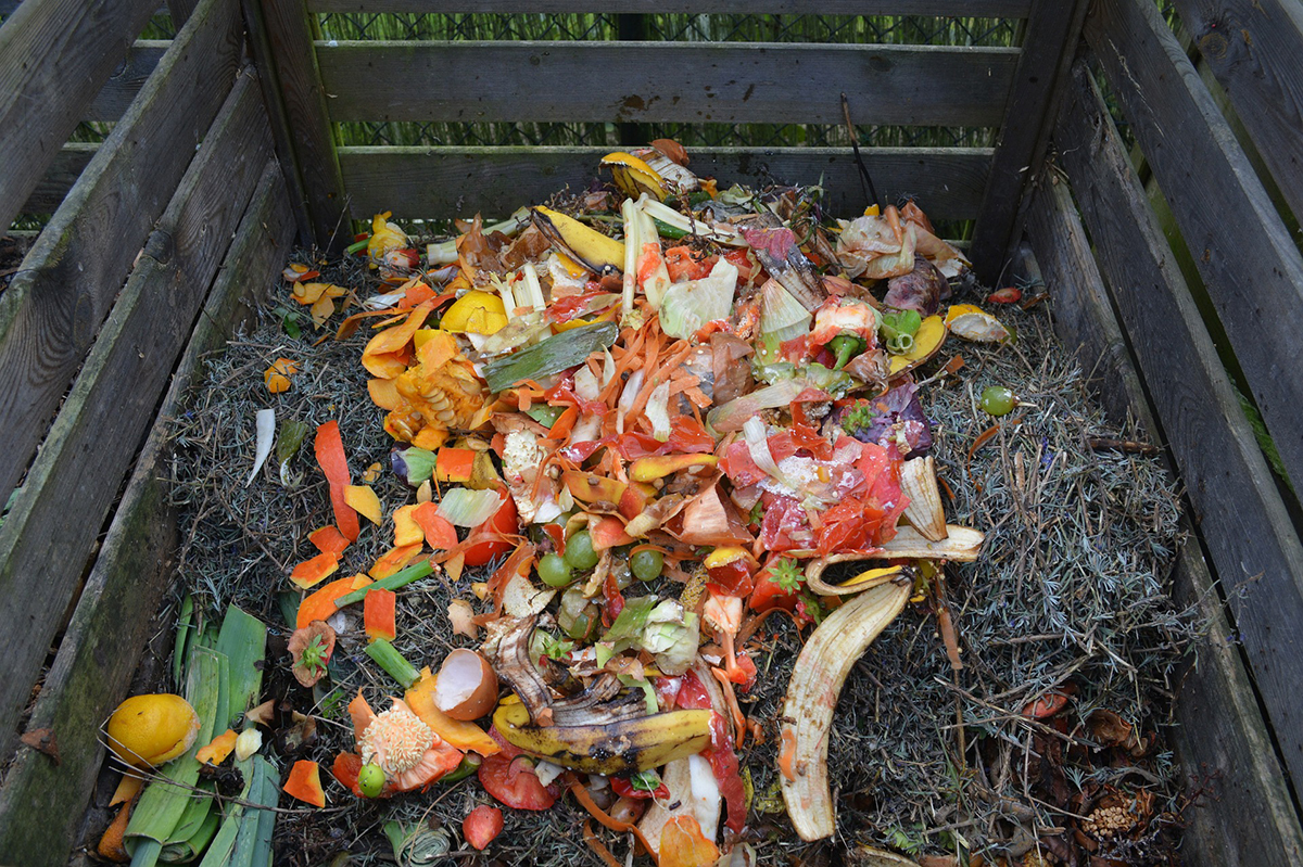 Compost Box in Garden