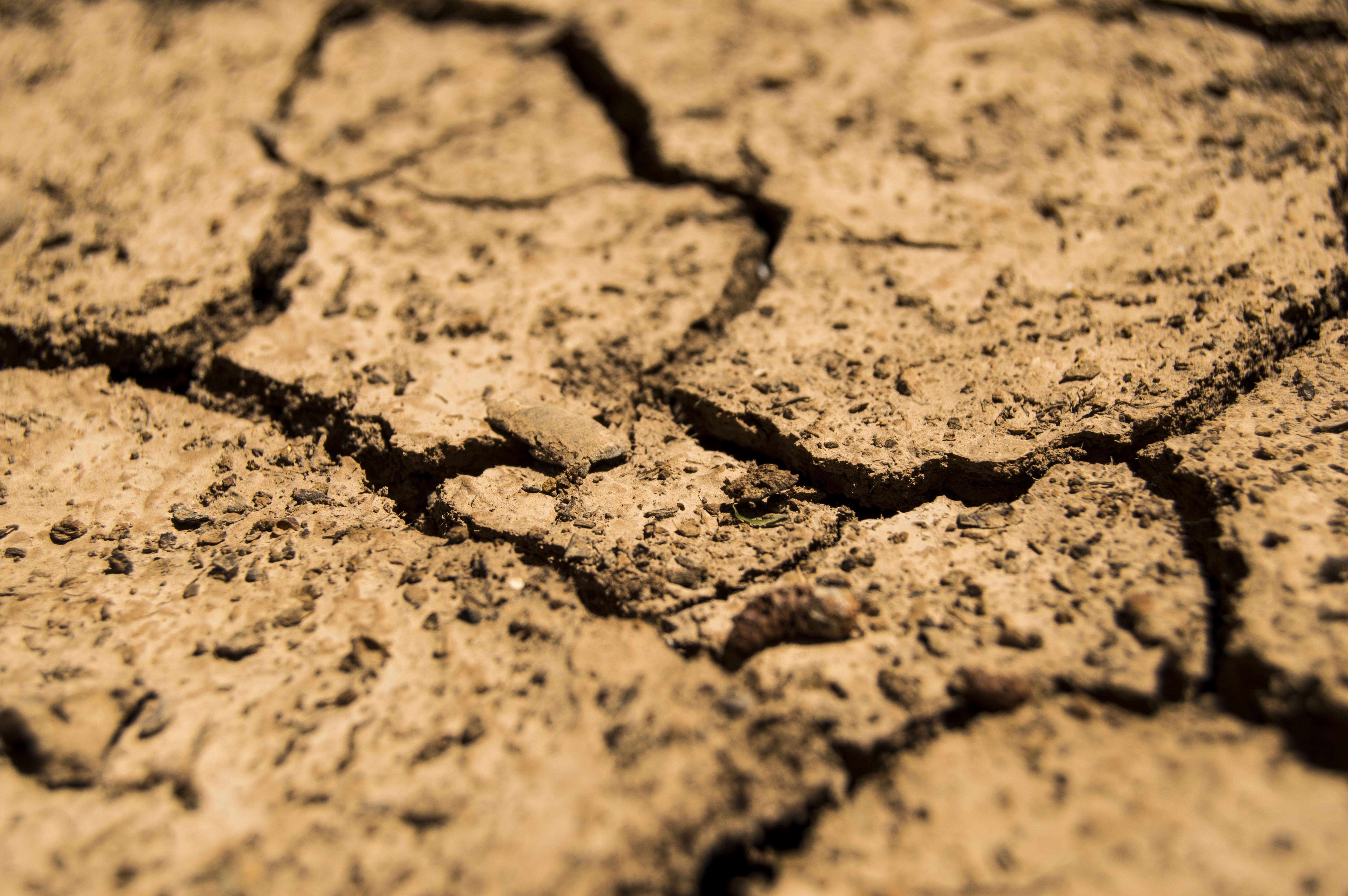 Dry Broken Soil