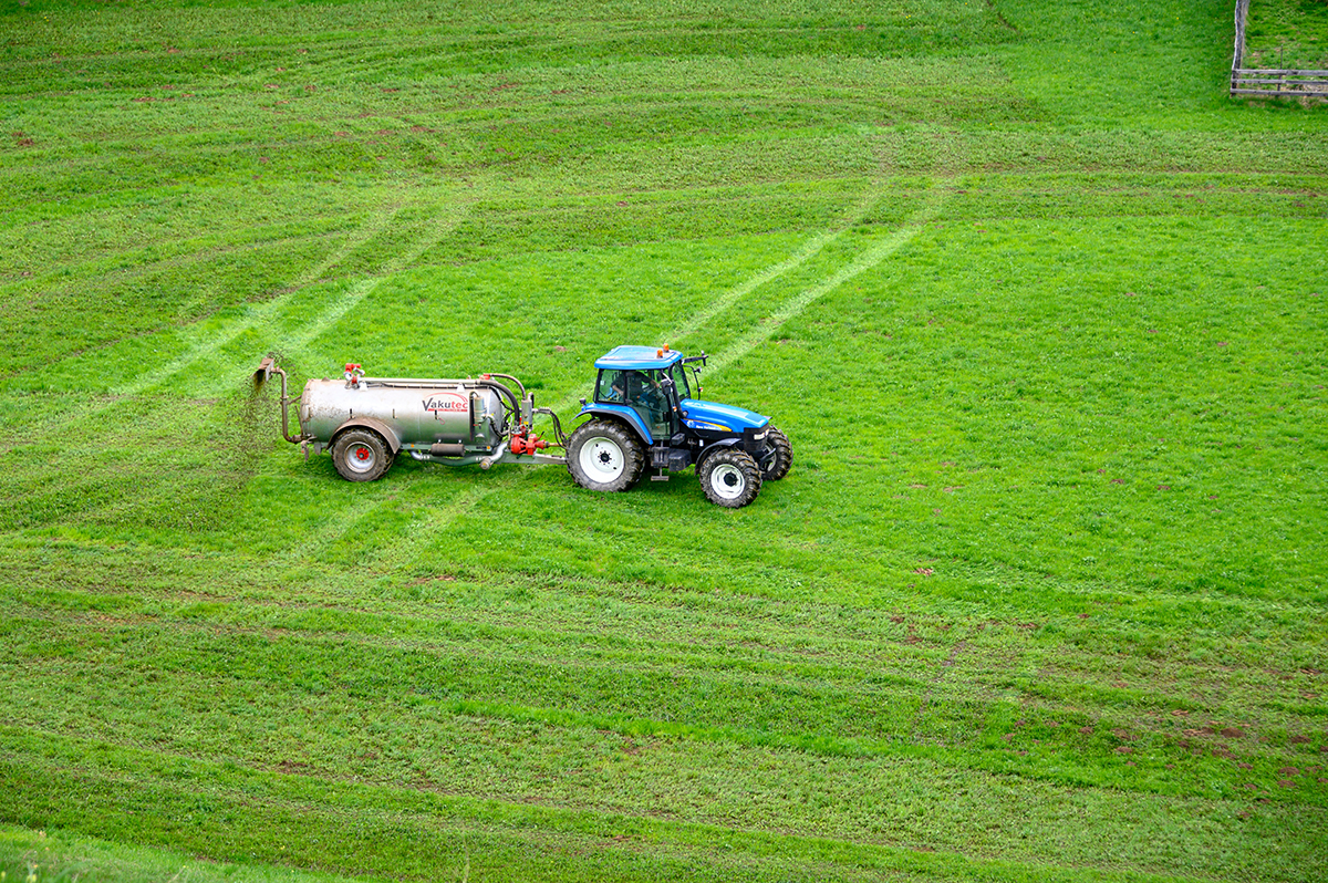 Tractor Fertilizing Green Crops