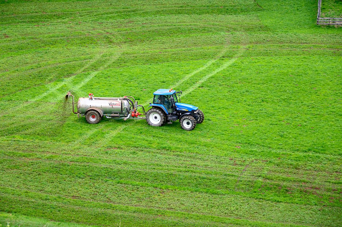 Tractor Fertilizing Green Crops