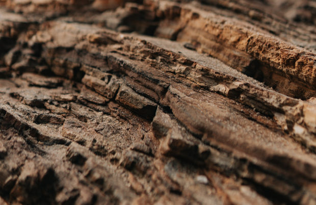 Closeup of rock highlighting the parent material of healthy soil