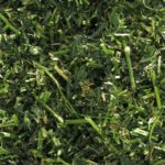 Non GMO Alfalfa Meal for BlueSky Custom Soil Blend