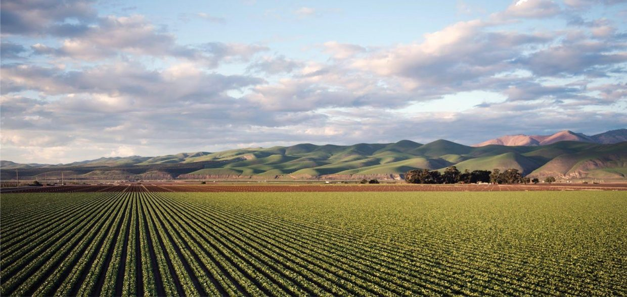 landscape field and mountains highlighting organic versus conventional farming