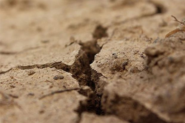 a closeup of dry, cracked soil