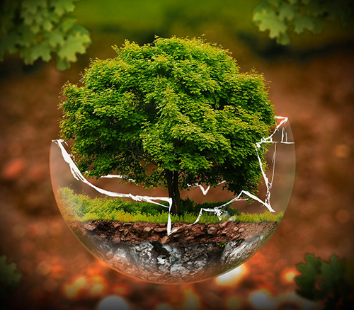a glass bulb containing an image of a tree and its roots and soil beneath it