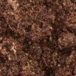 Sphagnum Peat Moss for BlueSky Custom Soil Blend