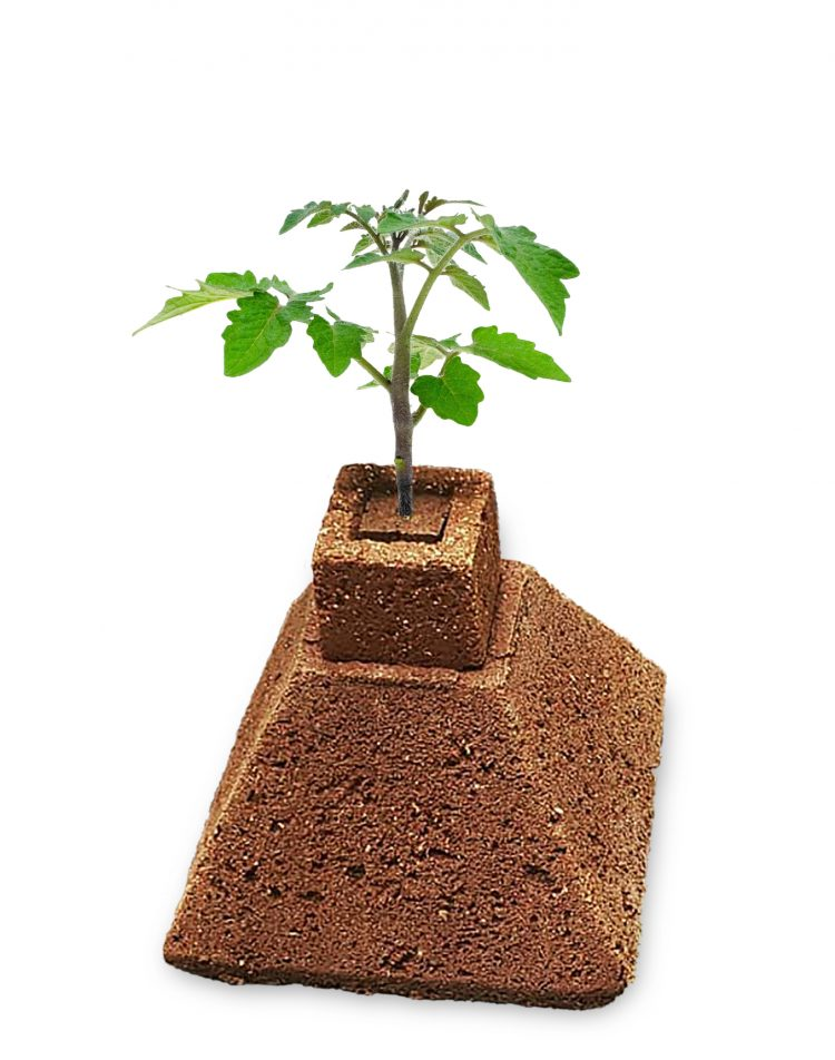 eazy grow pyramid is great for tomato plants.