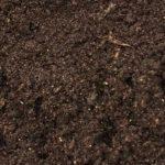 Worm Castings for BlueSky Custom Soil Blend